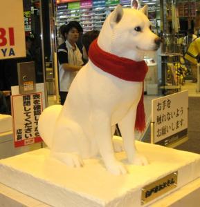 2008渋谷5