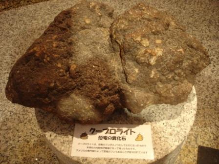 恐竜の糞の化石?