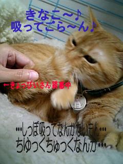 071013_152748.jpg