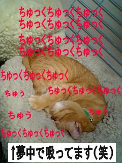 071013_153024.jpg