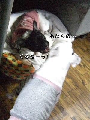 2010_0121晴教育0002