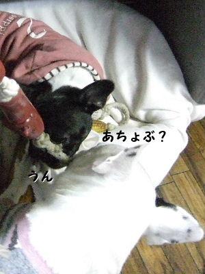 2010_0121晴教育0004