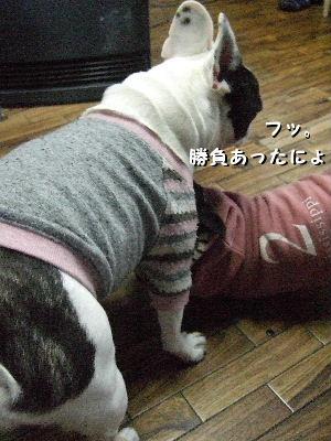 2010_0121晴教育0019