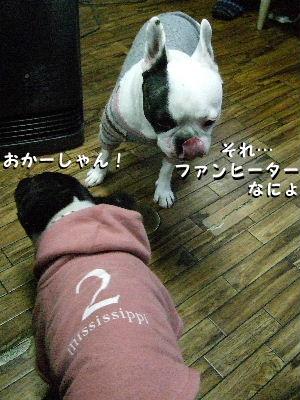 2010_0121晴教育0020