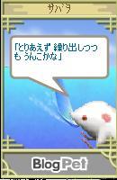 20050803125835.jpg