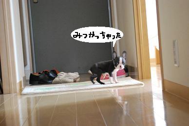 20090929DSC_0929.jpg