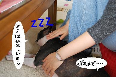 20091006DSC_1179.jpg