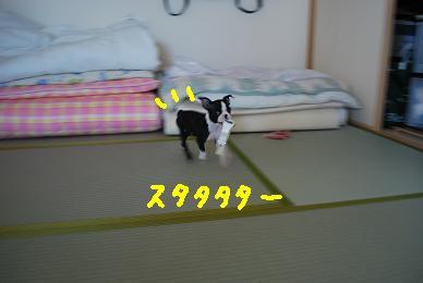 20091016DSC_1345.jpg