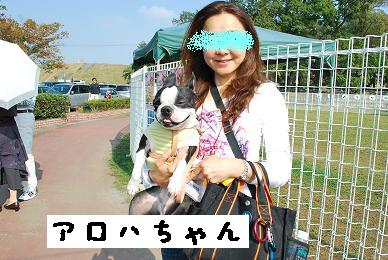 20091018DSC_1828_1.jpg