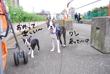 20091024DSC_2057.jpg