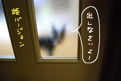 20091113DSC_2812.jpg