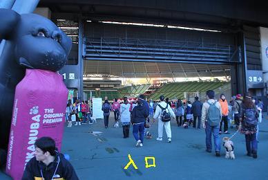20091116DSC_2855.jpg