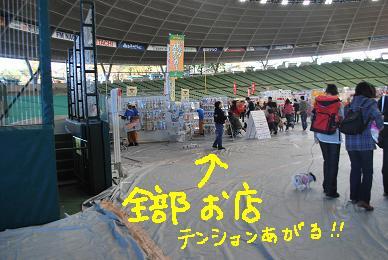 20091116DSC_2856.jpg