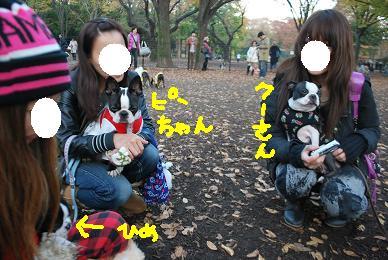 20091125DSC_3213.jpg