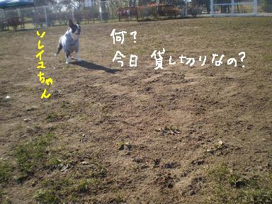 20091208PA110184.jpg