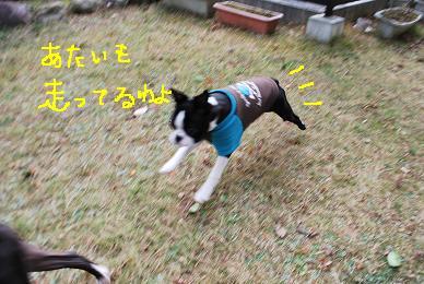 20091216DSC_3942.jpg