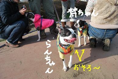 20091229DSC_4444.jpg