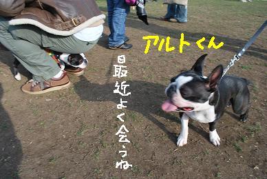 20091229DSC_4446.jpg