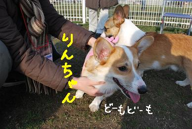 20091229DSC_4468.jpg