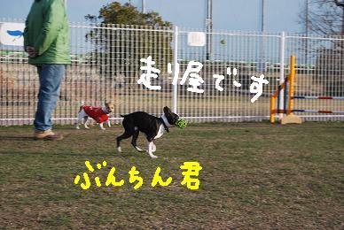 20091229DSC_4487.jpg