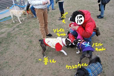 20100114DSC_5042.jpg