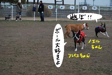 20100114DSC_5043.jpg