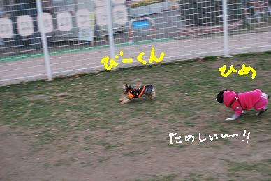 20100114DSC_5061.jpg
