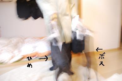 20100116DSC_4821.jpg