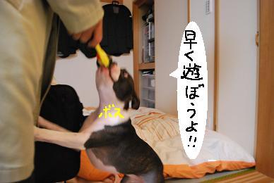 20100116DSC_4823.jpg