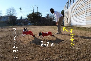 20100118DSC_5192.jpg