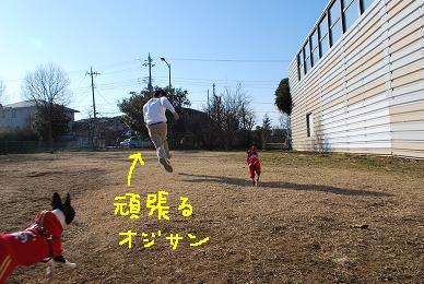 20100118DSC_5195.jpg