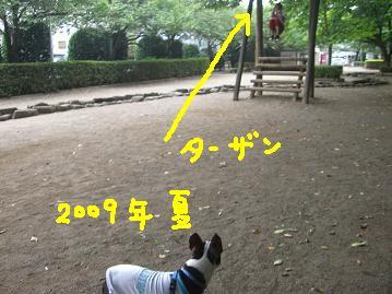 20100119CIMG3625.jpg