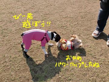 20100122CIMG0043.jpg