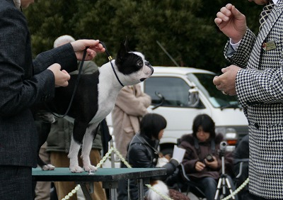 fukusuke2008/01/13in inage