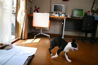 fukusuke2007/04/09