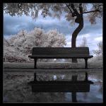 World_Harmony_by_gilad.jpg