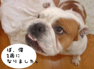 p-nobu71-p.jpg