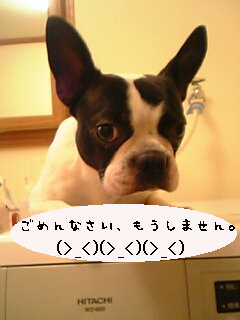 p-taku66-p.jpg