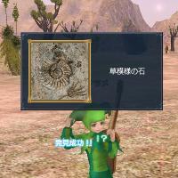 1002草模様の石発見♪