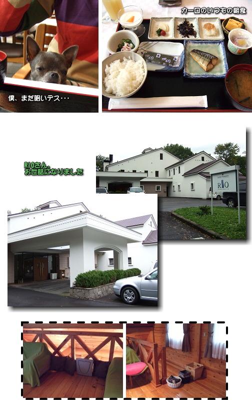 1_20091213034835.jpg