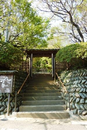 blog_百草園181009