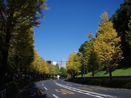 blog_代々木公園151109
