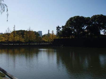 blog_黄葉に染まる和田濠151109
