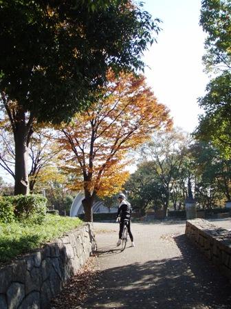 blog_途中の公園211109