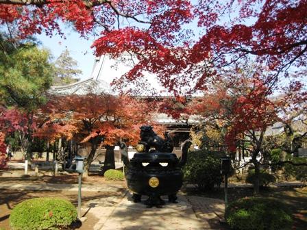blog_豪徳寺281109