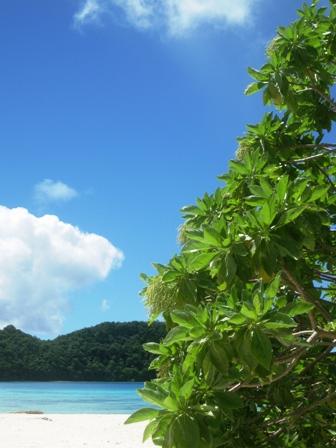 blog_ロングビーチからの眺め311209