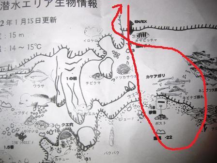 blog_1本目300110