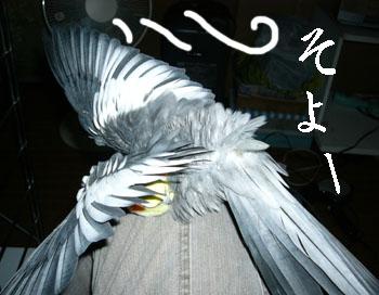 091010_01