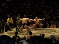 2008.1.23相撲 008