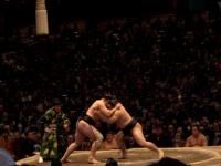 2008.1.23相撲 010